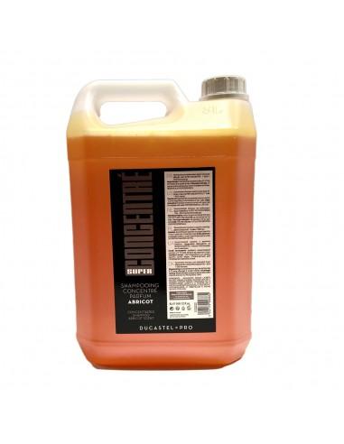 Gel douche/shampoing - Formule concentrée - Format 5 litres - Parfum miel / abricot